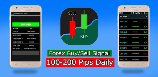 Professional forex trader course